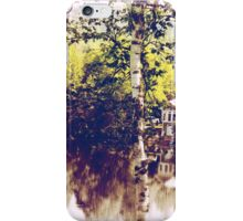 Birch tree landscape iPhone Case/Skin
