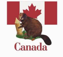Canadian Flag and Beaver by SpiceTree