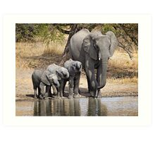 Elephant Mom and Babies Art Print