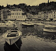 Portofino harbour B&W by Tom Davidson