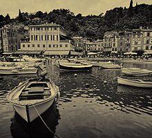 Portofino harbour B&W by Tom Davidson