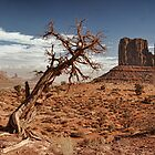 Monument Valley Utah-Mitten classic  by Tom Davidson