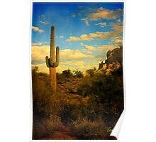 Desert Cactus Poster