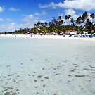 Barriera Corallina by Foto Kem