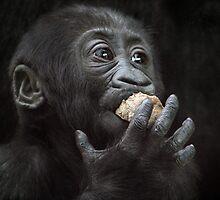 taste testing by Tamara  Kaylor