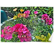 Summer Flower Pot (HDRI) Poster