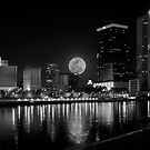 tampa moon  by james smith