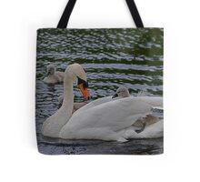 Oy!  Stop Digging Yer Claws In!! Tote Bag