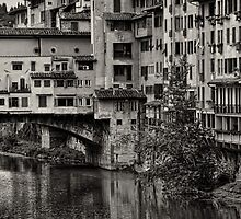 Ponte Vecchio vertical morning by Tom Davidson