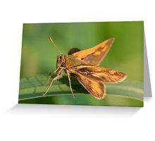 Following The Light Of The Sun. Greeting Card