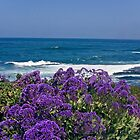 La Jolla Coast IV by heatherfriedman