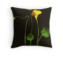 Golden Nasturtium Throw Pillow