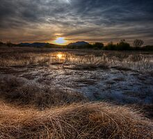 Sunset and Straw by Bob Larson