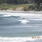 Surfing Backwards? by Sandra Gray
