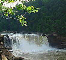 Cumberland Falls by Sandy Dunn