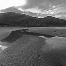 Wilsons Prom, Norman Beach by Catherine Davis