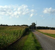 Pictou County Fields by GOSPhotography