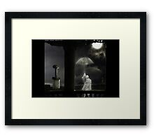 "Wushu series ""Strength & Honour"" Framed Print"