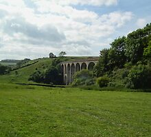 Cannington Viaduct  Uplyme by lynn carter
