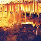 Stalactites at Naracoorte Caves by Michael John