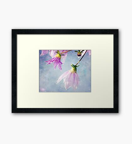 With a touch of Magic Framed Print