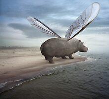 Fly away by KLIMAS