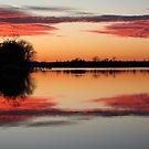 Soft Winter Sunset by Eileen McVey