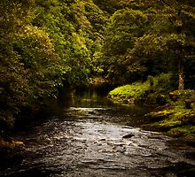 River Wharfe at Bolton Abbey by Neil Messenger