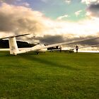A Glider or Two by vanyahaheights