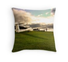 A Glider or Two Throw Pillow