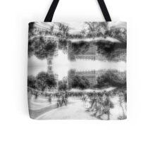 P1410300-P1410301 _GIMP _Luminance _XnView  Tote Bag