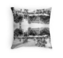 P1410300-P1410301 _GIMP _Luminance _XnView  Throw Pillow