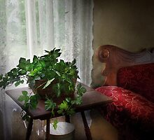 Furniture - Ivy in a window  by Mike  Savad