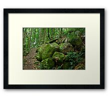 Tranquil Path Framed Print