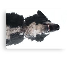 Freckled Chin Canvas Print