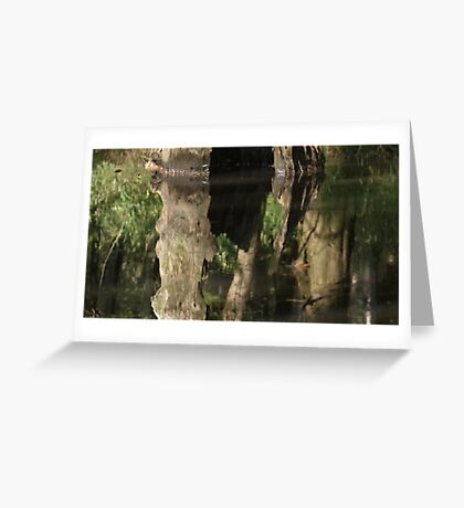Simplicity At Best Greeting Card