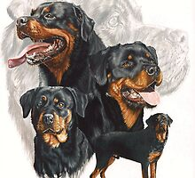 Rottweiler /Ghost by BarbBarcikKeith