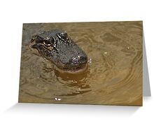 Young Alligator, As Is Greeting Card