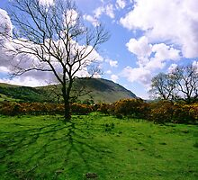 Wasdale Cumbria by Mark Baldwyn