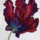 Black Parrot Tulip by Susan Duffey