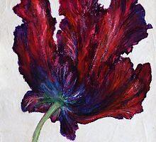 Black Parrot Tulip by Susan Duffey