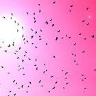 Organismi volanti by Foto Kem