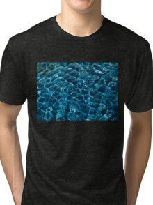 Penguin Pool I Tri-blend T-Shirt