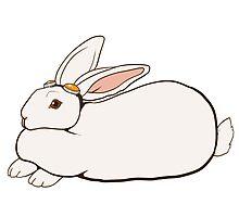 Goggles Bunny Photographic Print