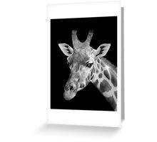 Giraffe, Black And White Greeting Card
