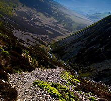 Newlands Valley, Cumbria. UK by David Lewins