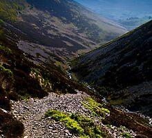 Newlands Valley, Cumbria. UK by David Lewins