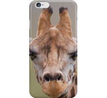 Giraffe 2 iPhone Case/Skin
