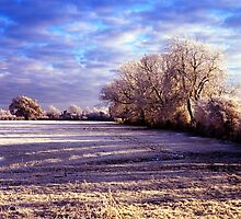 Winter field in Hertfordshire by Michael Schmid