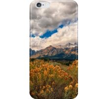 Wild Flowers and Teton Mountains III iPhone Case/Skin